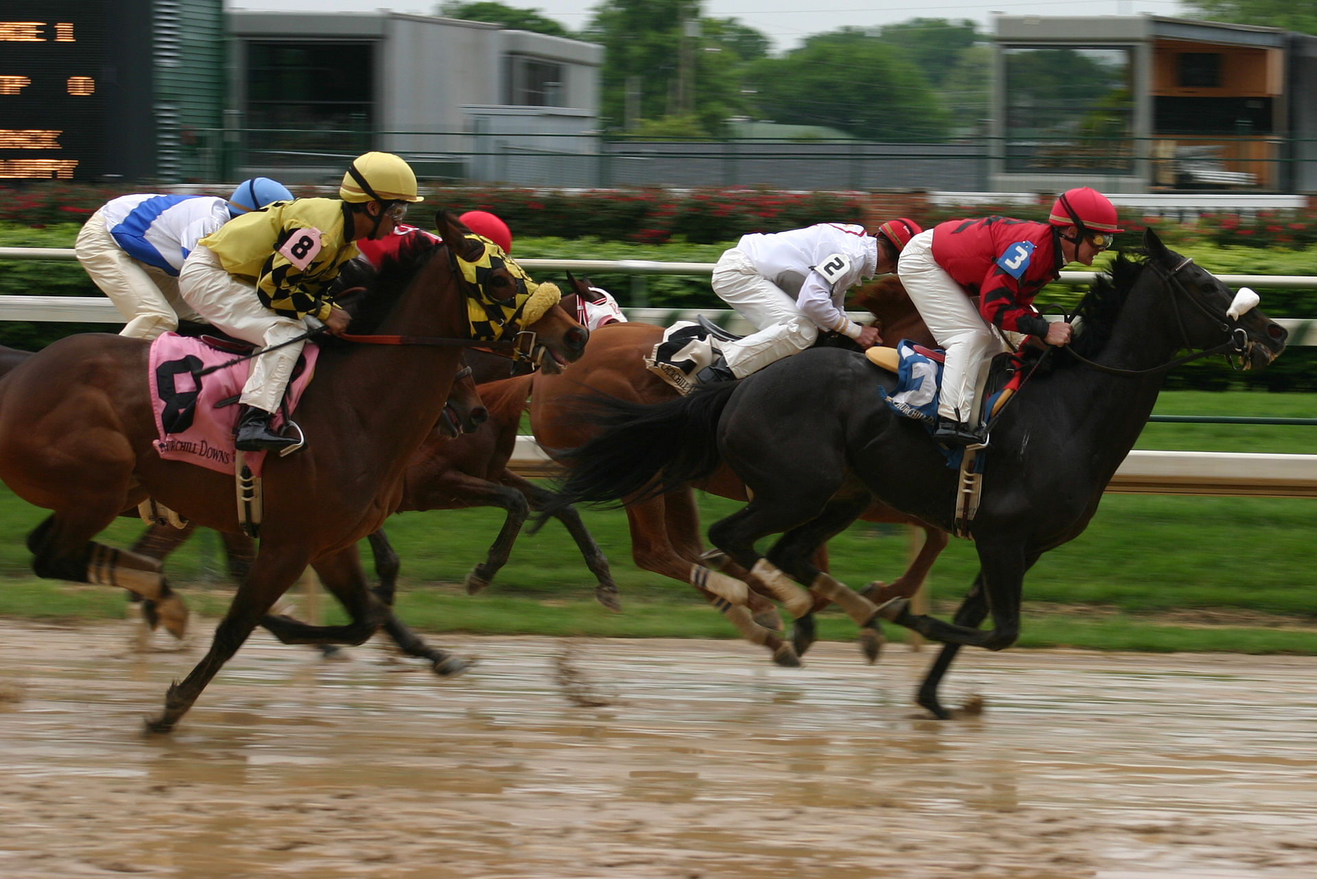Churchill Downs Racing - Day At The Races